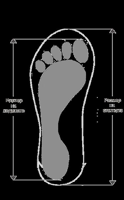 tablitsa razmeri na obuvki effetti - Как да изберем подходящите обувки?